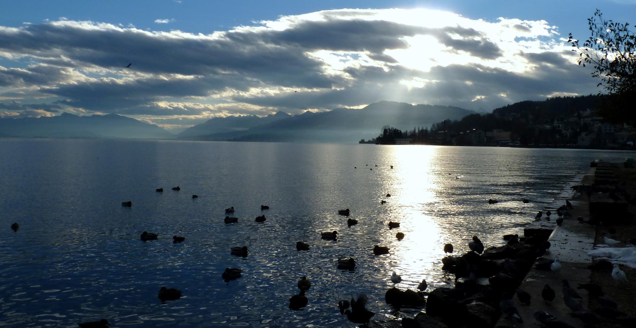 Lac de Zurich / Lago de Zurich / Zürichsee