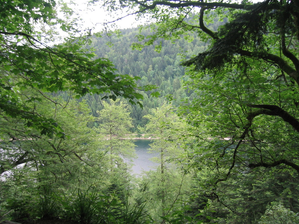 Lac des corbeaux, vue du chemin de randonnée
