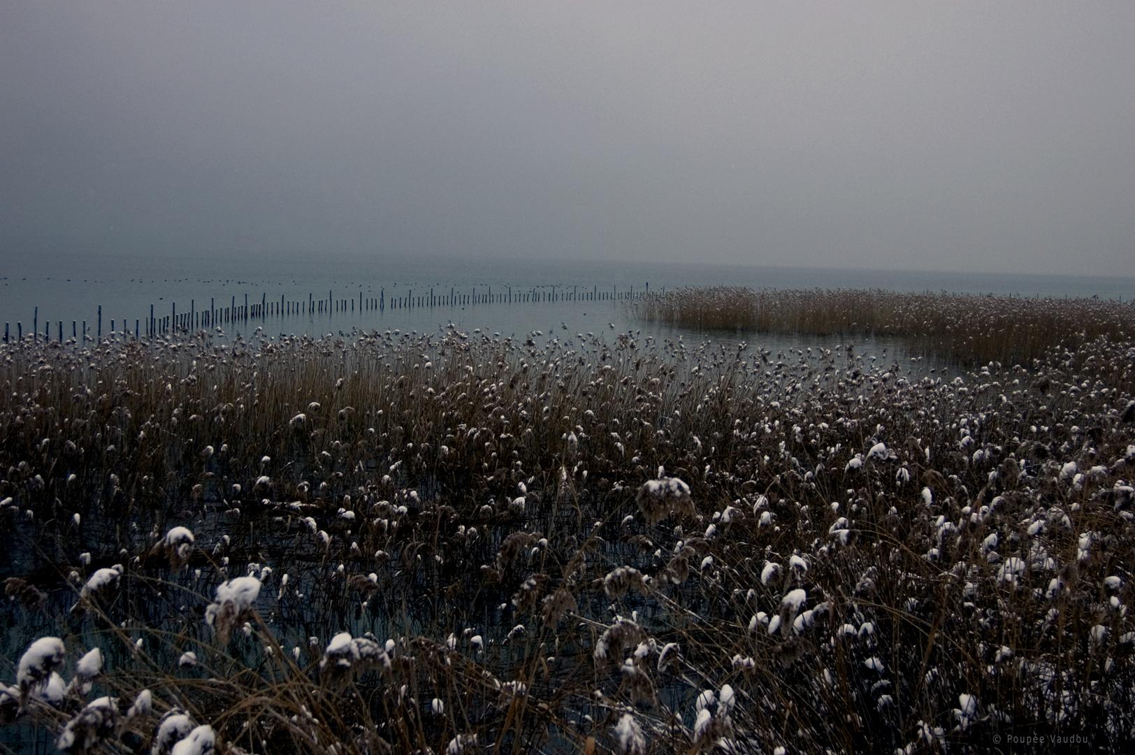 lac du bourget 1.2010
