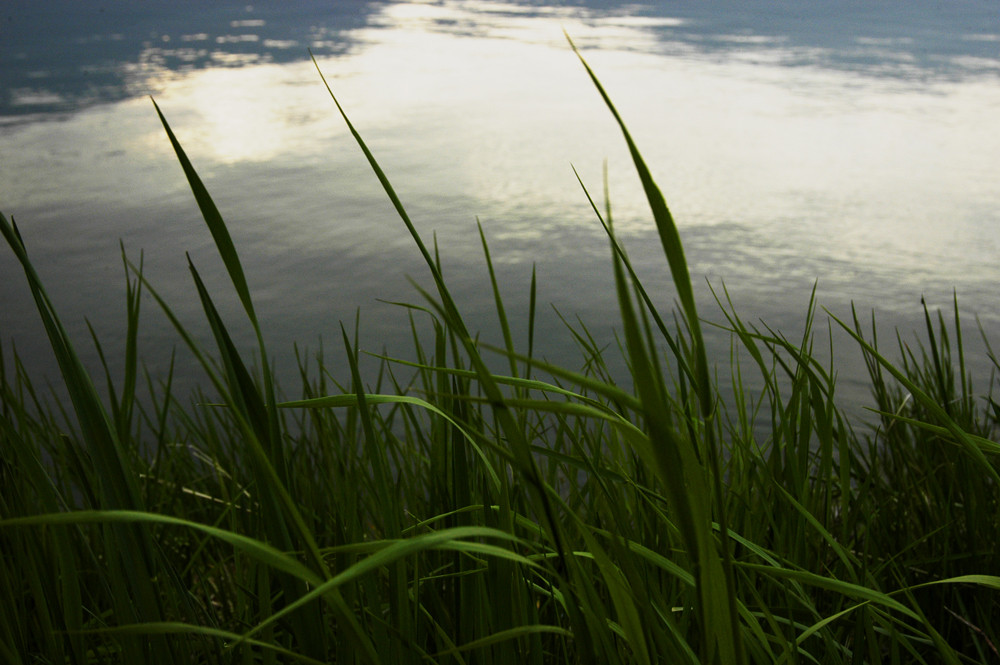 lac du Bourget 7