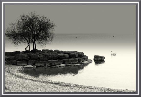 Lac du Cygne..........