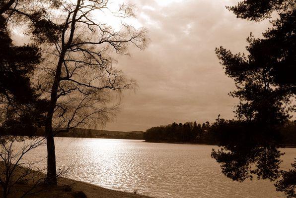 Lac du Setton Nièvre le 09/01/2014