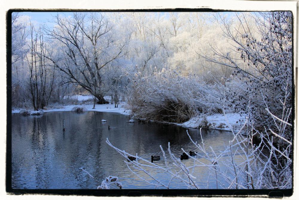 lac enneigé