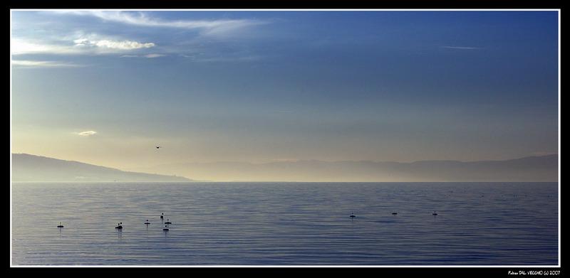 Lac Léman épuré