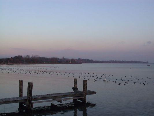 Lac leman, Ufer am Abend
