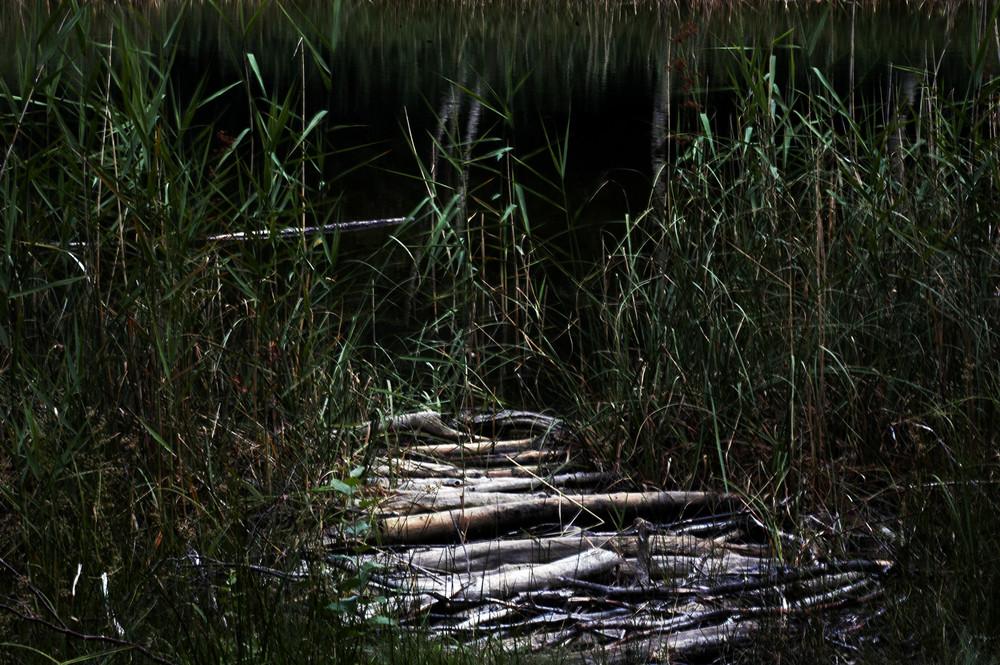 lac noir 1