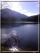 Lac Saint-Clair (Détrier) 1