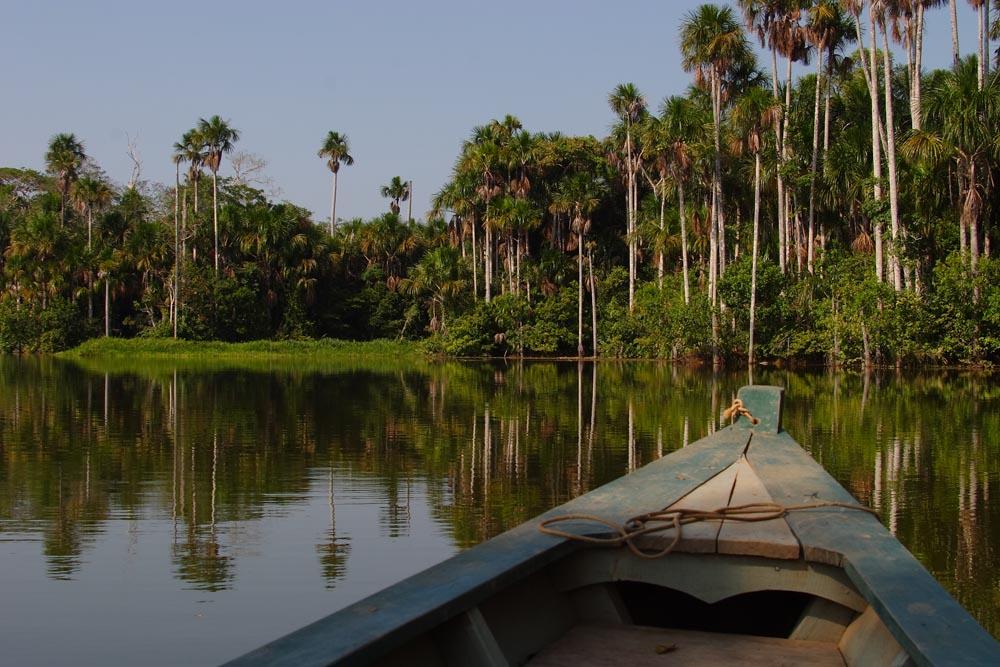 Lac Sandoval, Madre de Dios, Pérou