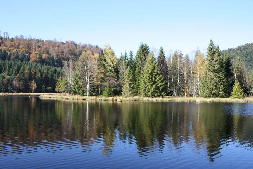 lac vosgien 2