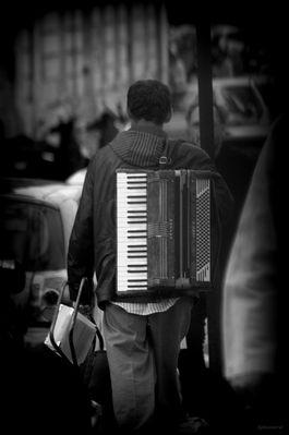 L'accordéoniste de Notre Dame.