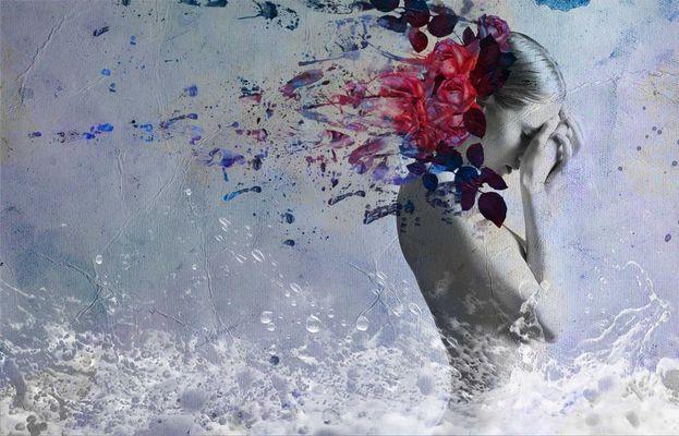 L'acqua e le rose