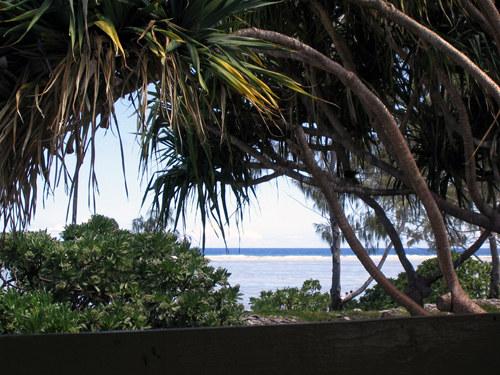 Lady Eliot / Great Barrier Reef