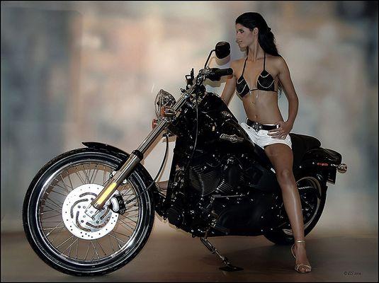 Lady Harley - 1