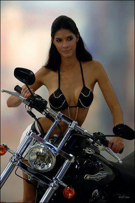 Lady Harley - 2