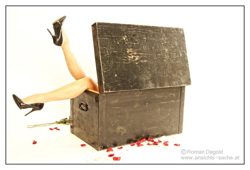 Lady in a Box