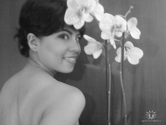 Lady Orchid