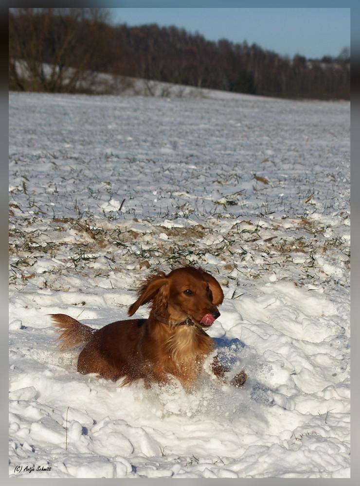 lääcker Schnee......