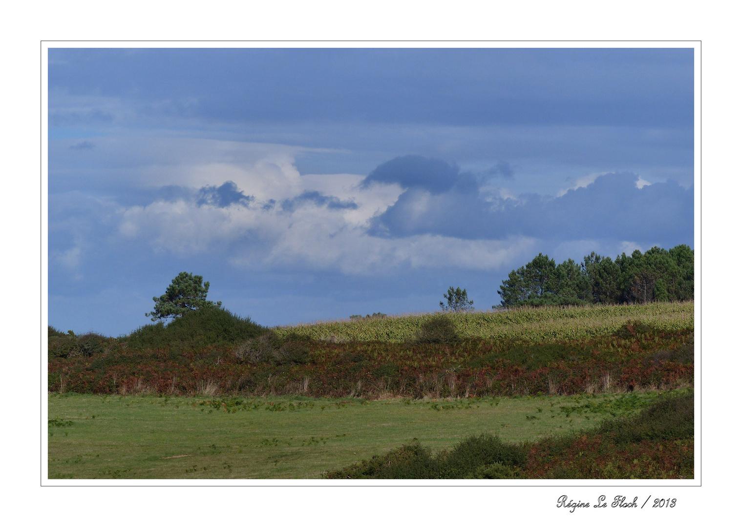 Ländliche Bretagne / Bretagne rurale