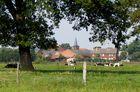 Ländliche Idylle in der Altmark