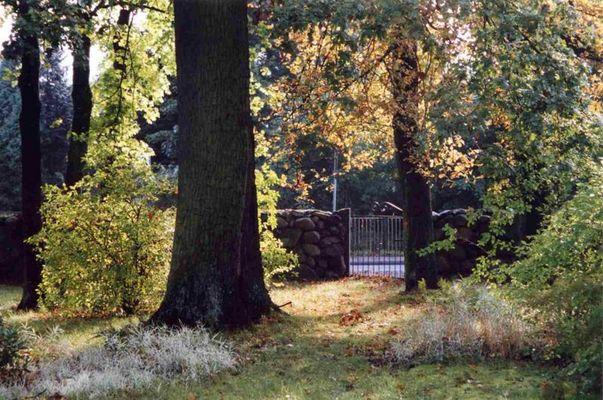Ländlicher Vorgarten