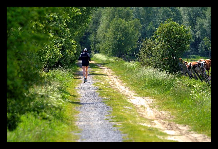 Läufer auf dem Weg :o)
