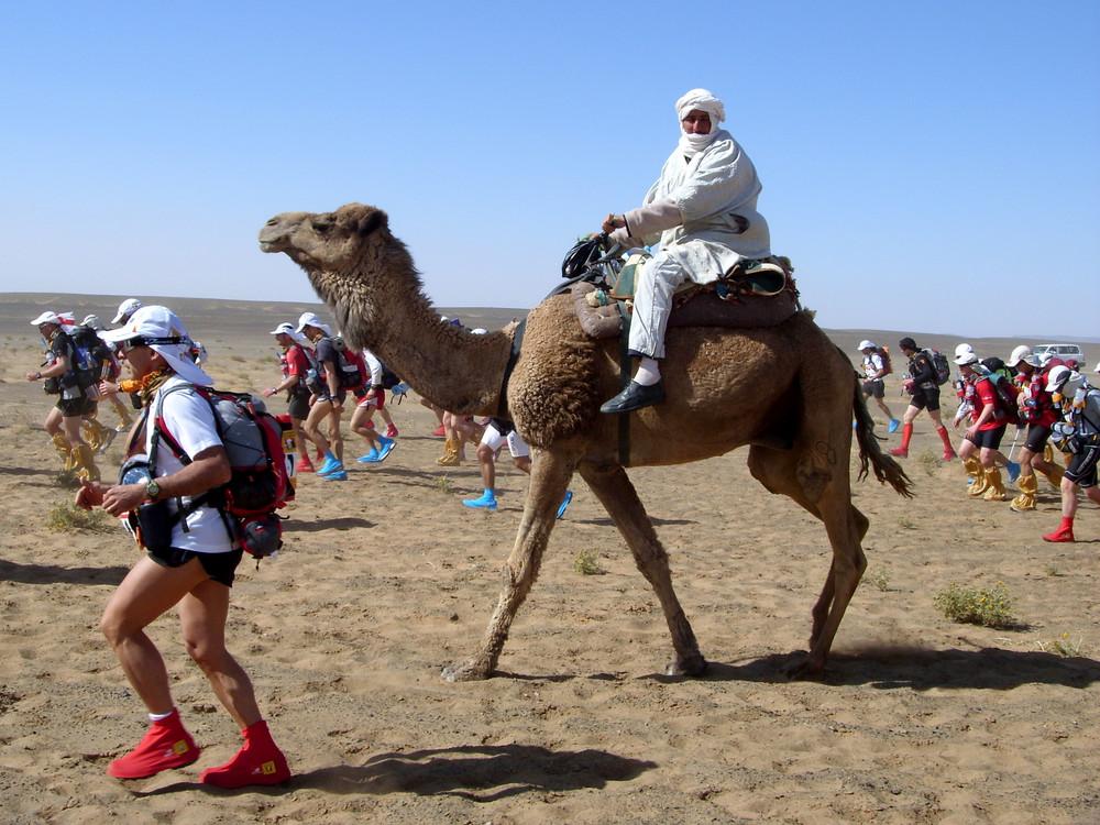Läufer und Wüstenschiff beim 23. MARATHON DES SABLES 2008