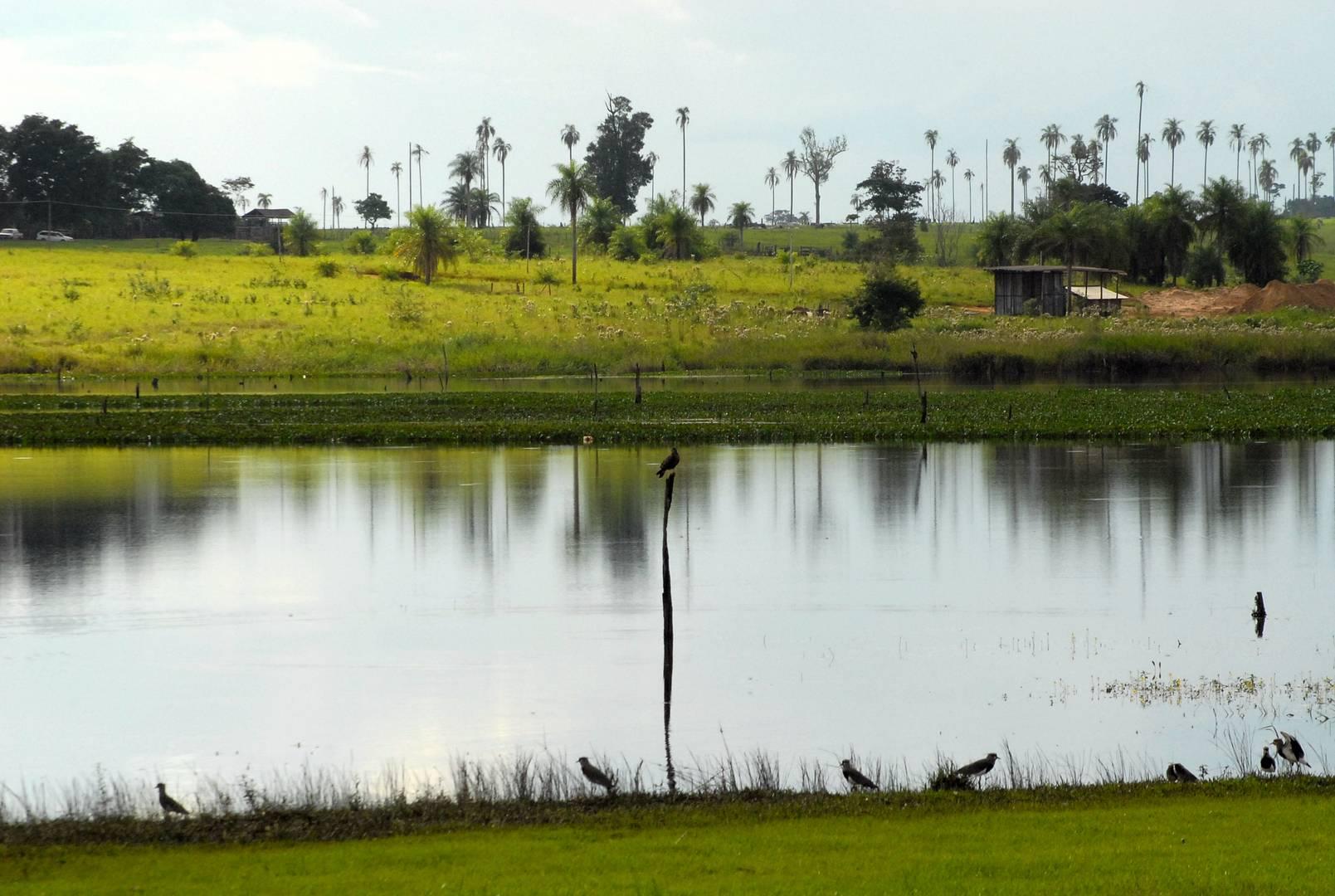 Lago Acaray