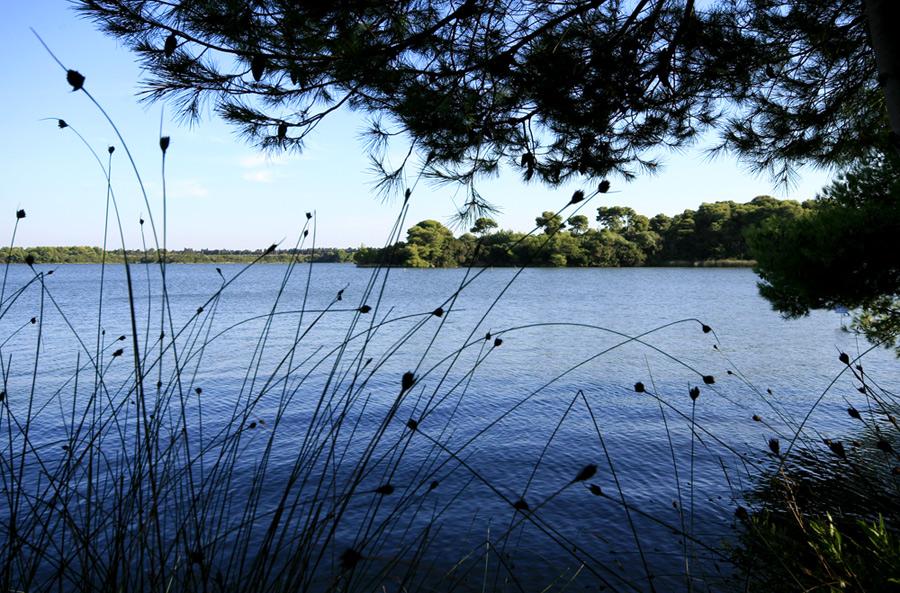 Lago Alimini