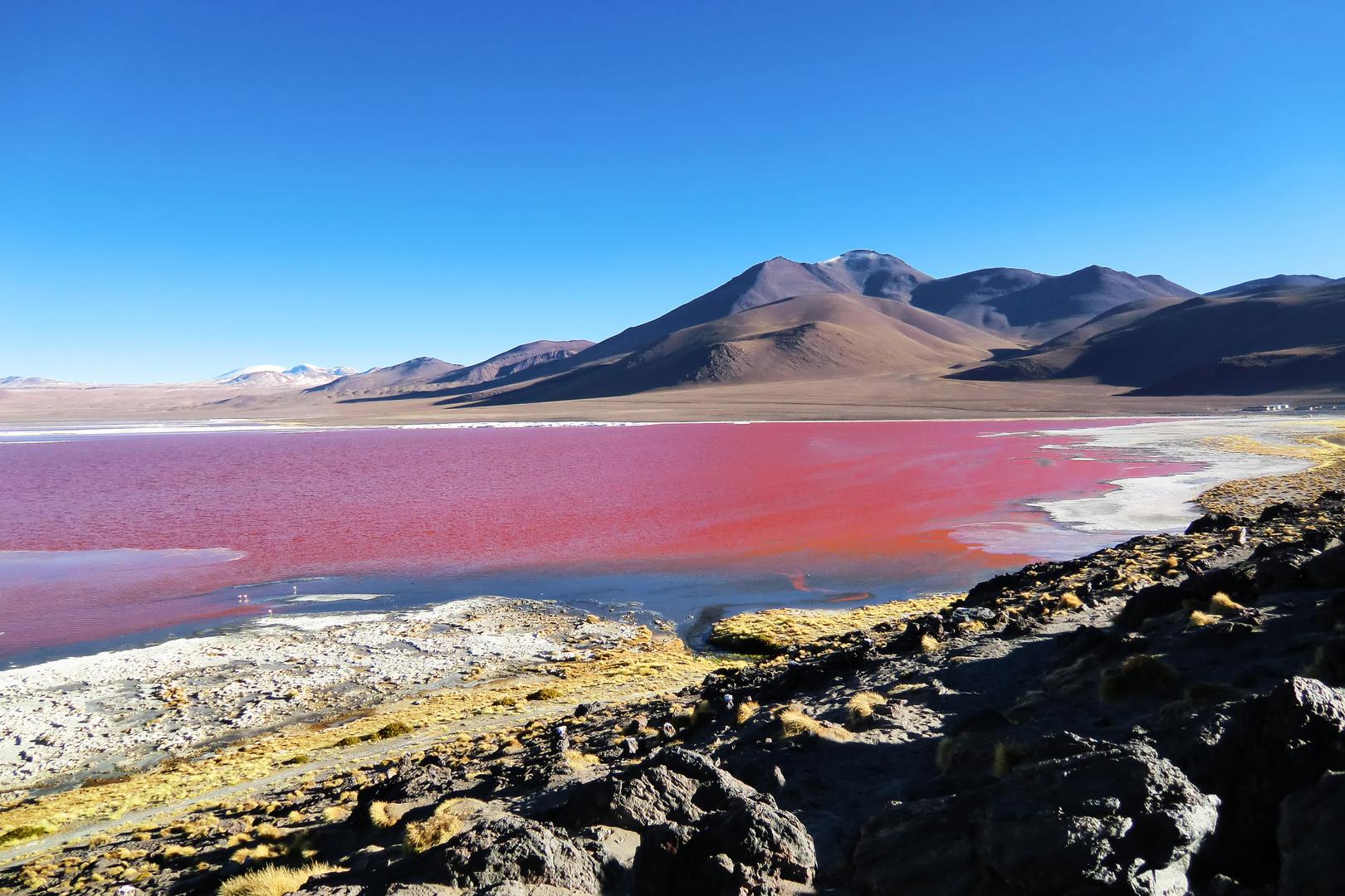Lago Colorada