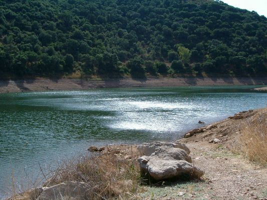 Lago Corsi
