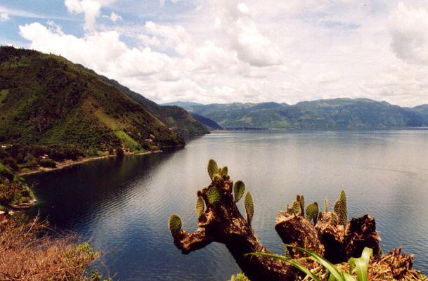 Lago de Atitlàn con cactus