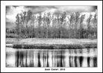 Lago De sils