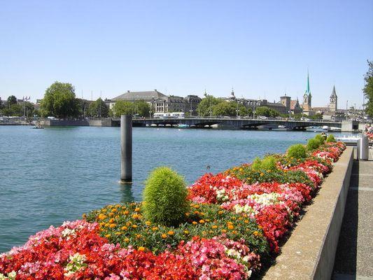 Lago de Zürich
