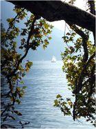 Lago di Lugano im Morgendunst