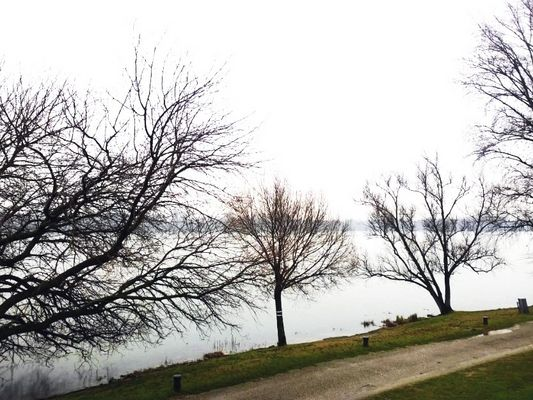 Lago di Mantova