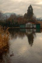 Lago di Massaciuccoli - le baracche