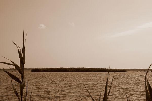 lago di massaciuccoli lucca