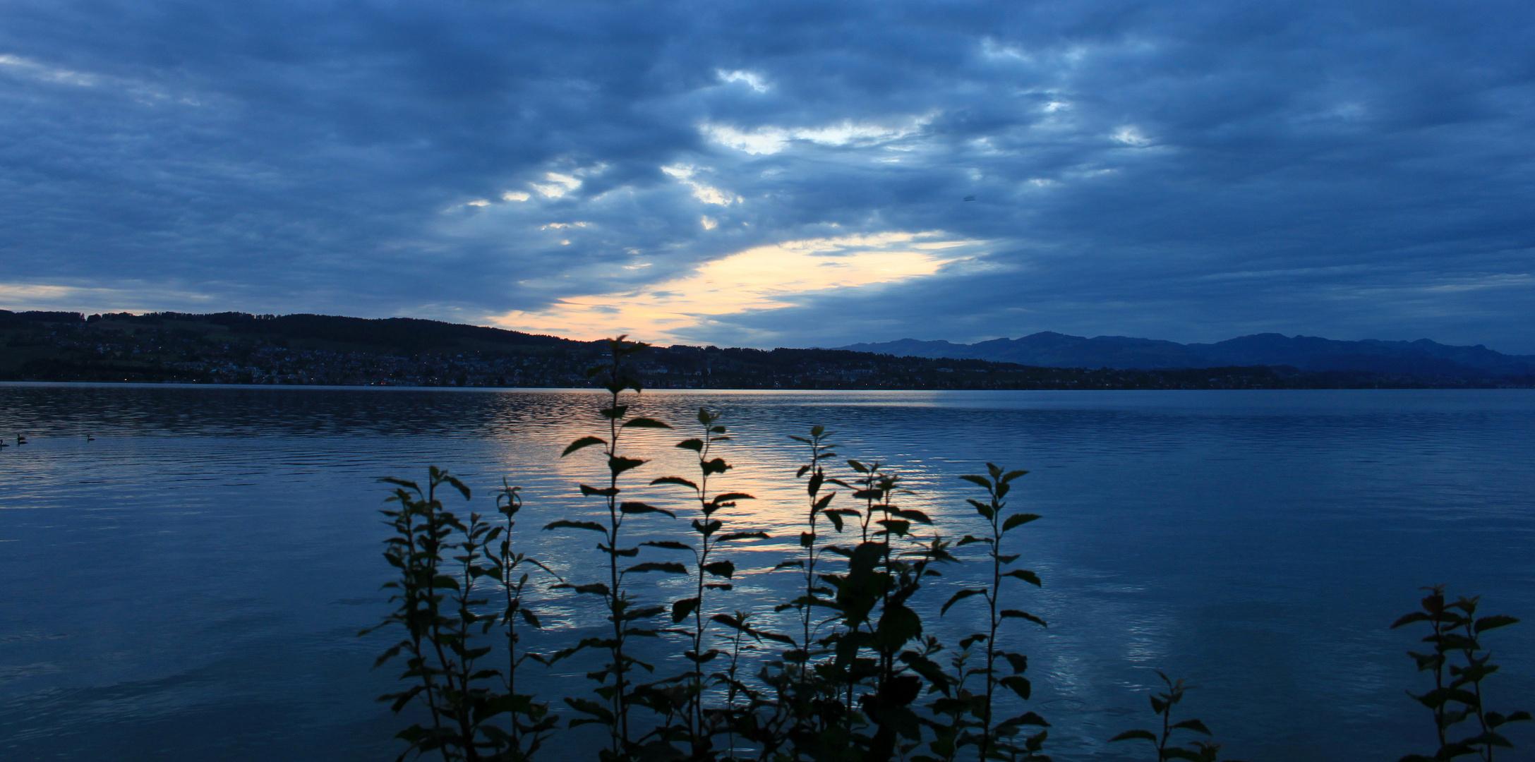 Lago / Lac / Zürichsee..01
