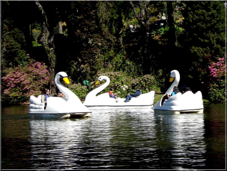 Lago Negro- Gramado- RS