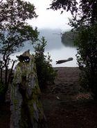 Lago Pirehueico Chile
