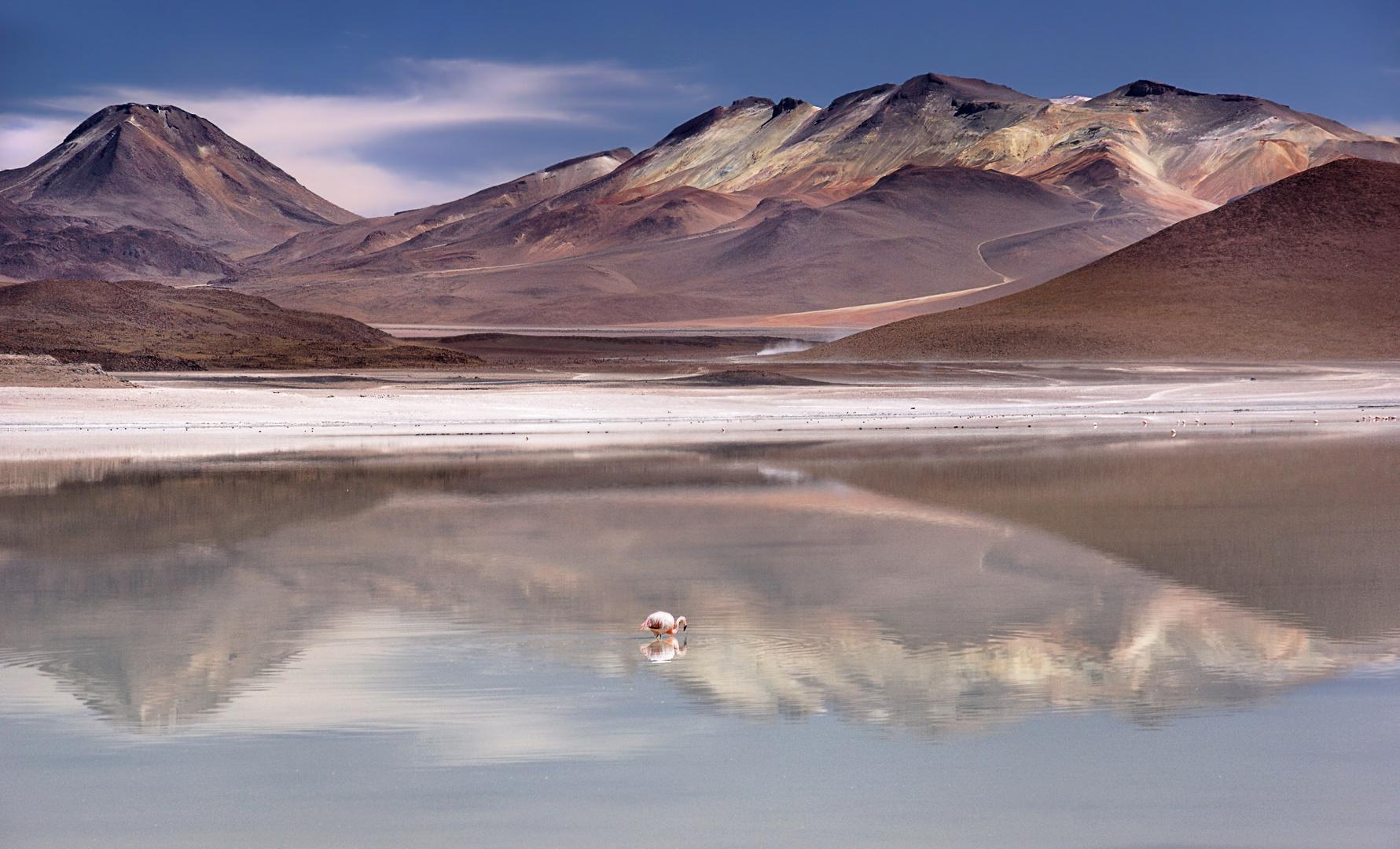 Laguna Blanca 2