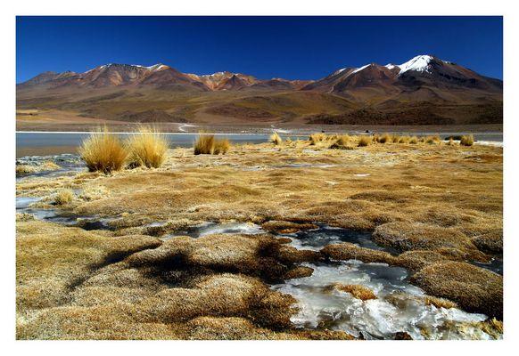 laguna Blanca Höhe:4200 m Reload