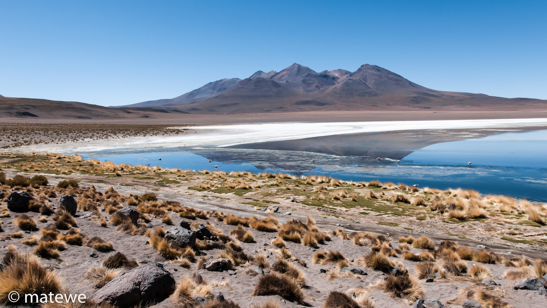 Laguna Canapa - Bolivien