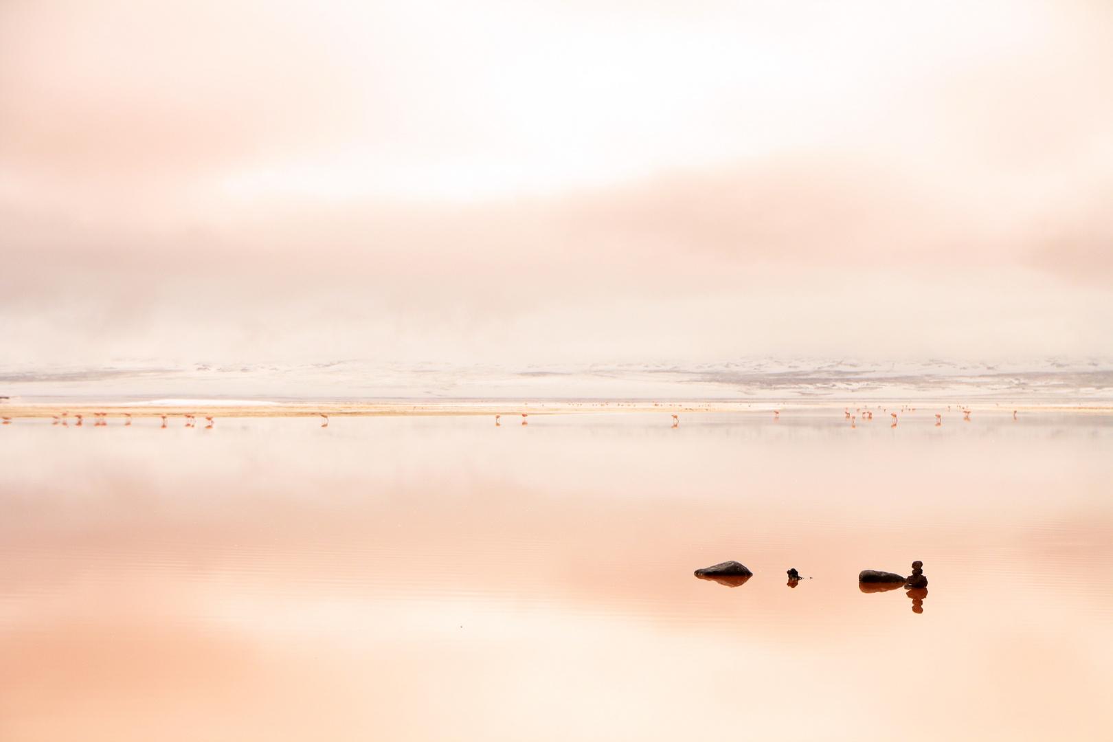Laguna Colorada - Bolivien