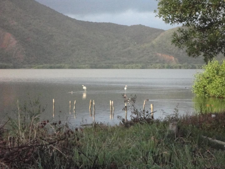 Laguna de Unare El Hatillo