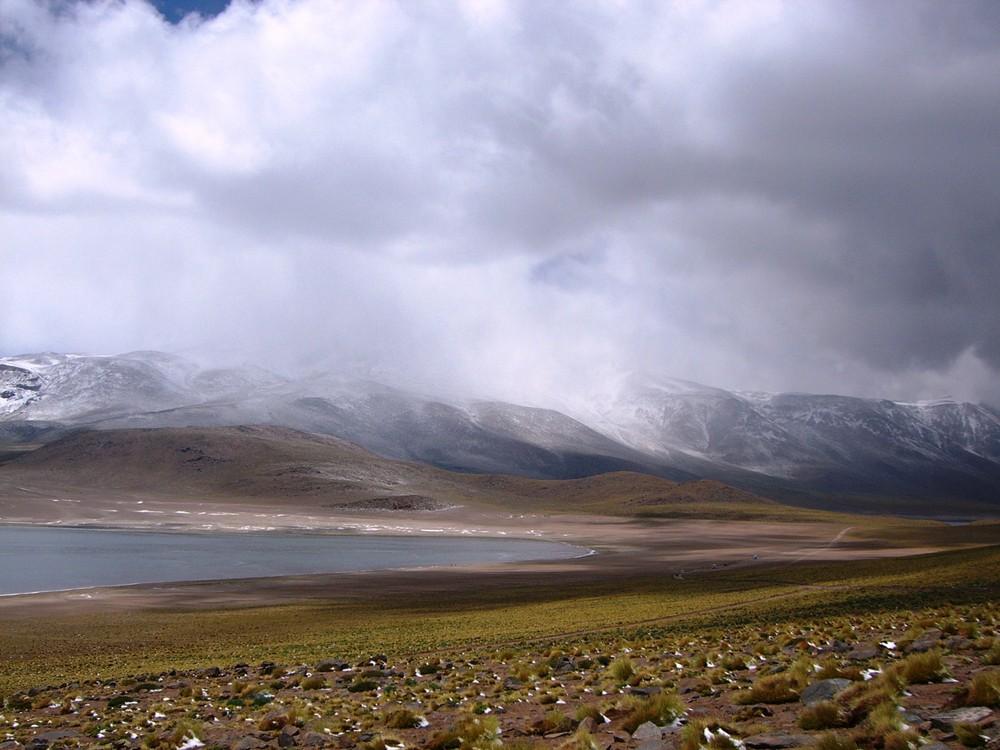 Laguna Miscanti - Atacama / Chile