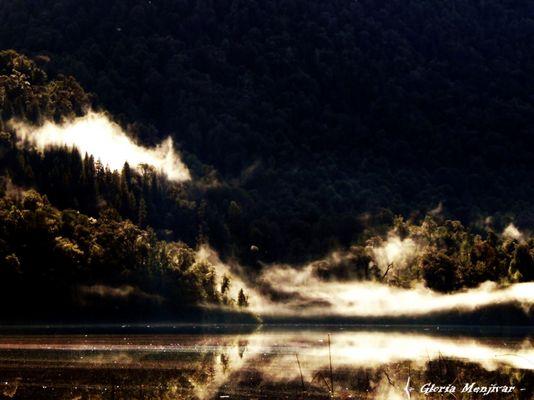 Laguna Sargazo, en Parque Nacional Alerce. Andino.