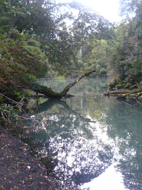 Laguna verde. Osorno