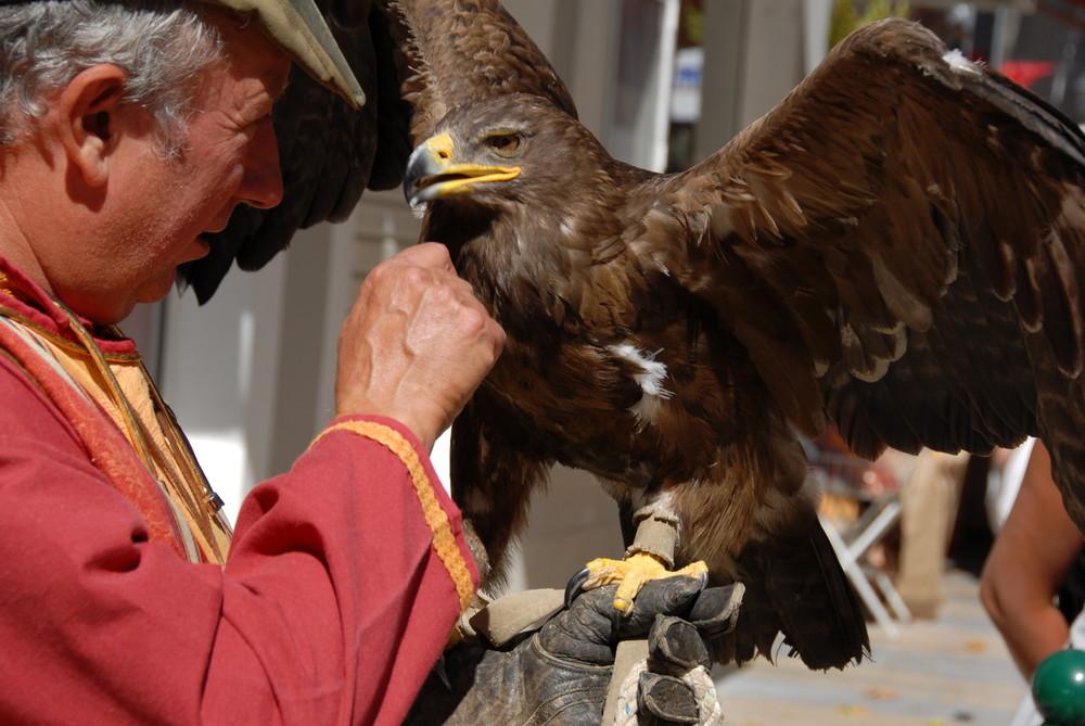 l'aigle et son maitre