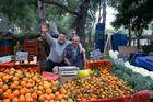 Laiki, Kifissia, Hellas